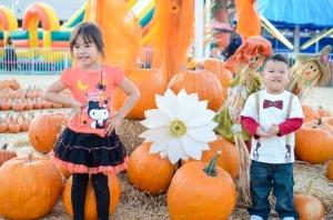 PumpkinPatch13-0006